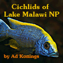 Profiles of each one of the 220 cichlid species in the park