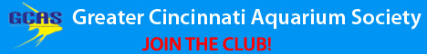 Greater Cincinnati Aquarium Society